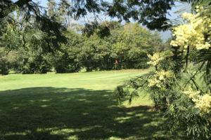 terrain-golf
