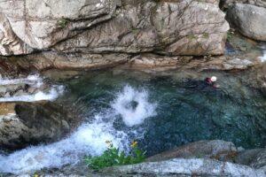 cime-di-corsica-plongeon