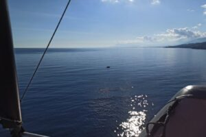 bateau-volant-vue-mer